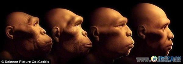 进化成新物种:人类将永生