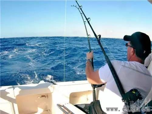最有高速的海钓钓法――拖钓·第二部