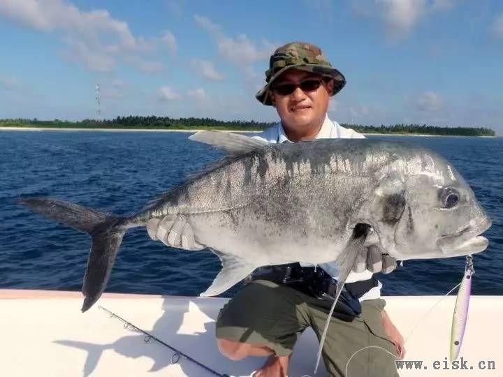 最有高速的海钓钓法――拖钓·第三部
