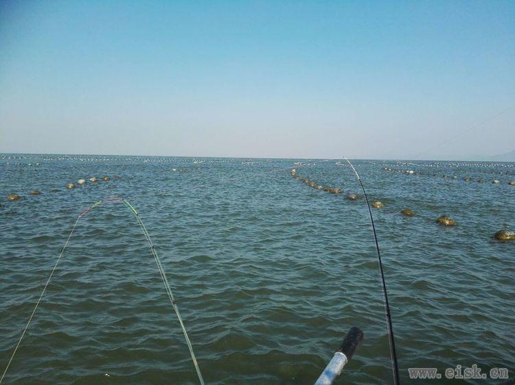 【fds游钓系列】海宴蚝排,日水出击