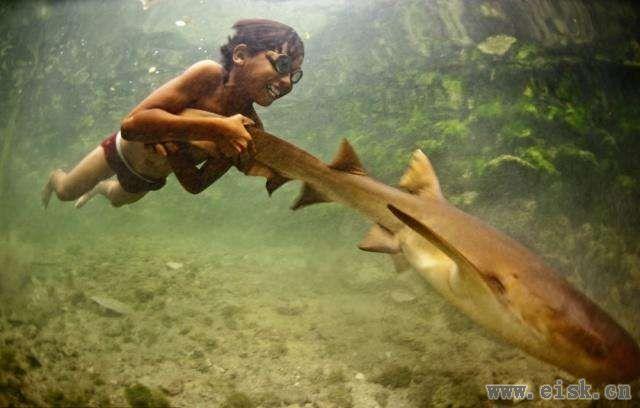 他们没有国籍, 不受任何约束, 眼睛进化异于常人, 吃得比谁都好