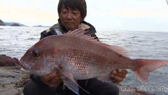 高橋哲也 流す釣りで真っ向勝負!