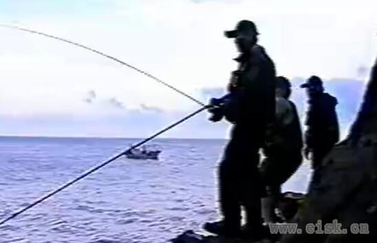 韩国矶钓大规格手刹轮矶钓大型鱼类