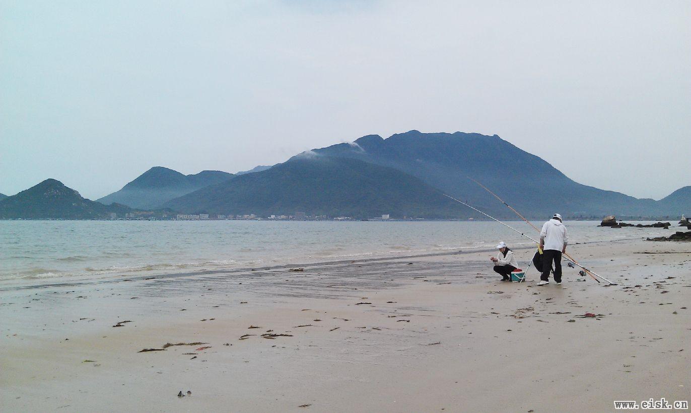 天灰灰海边钓杂鱼