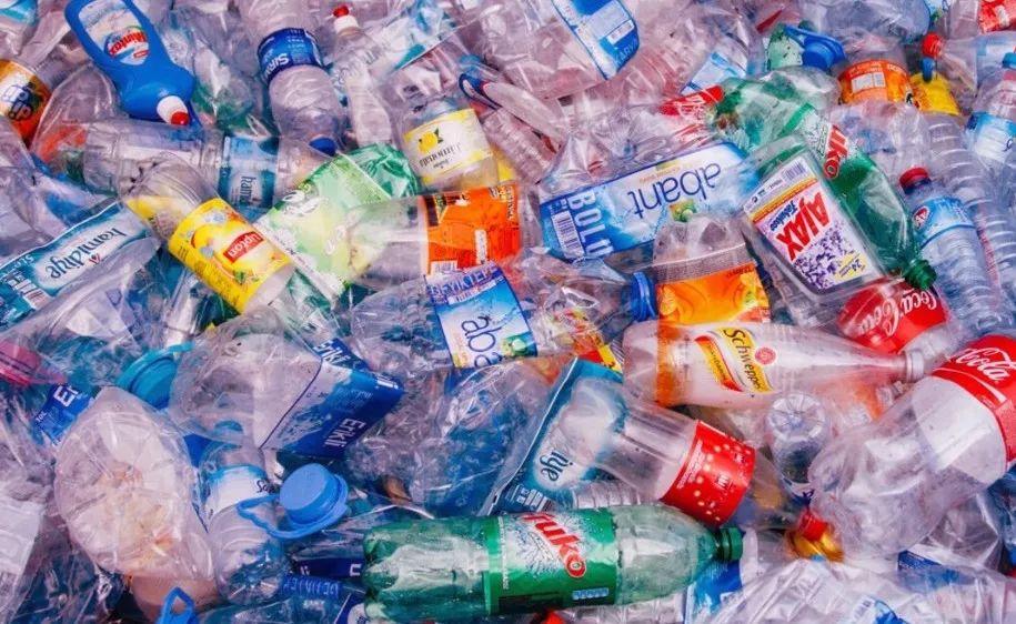你扔掉的塑料,是怎么被你一口一口吃回来的?