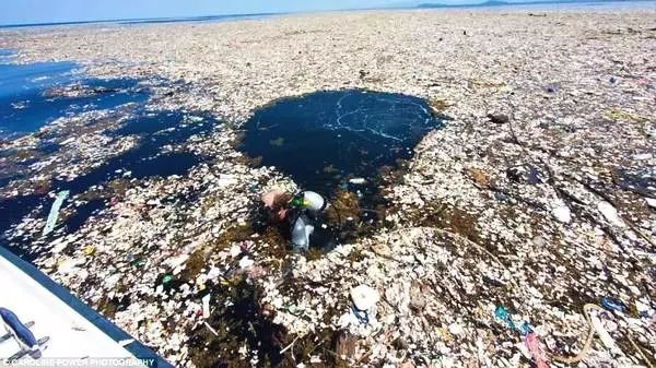 """1500万尸体,640万吨垃圾,继""""冰桶挑战""""之后,又一挑战火遍了全球…"""