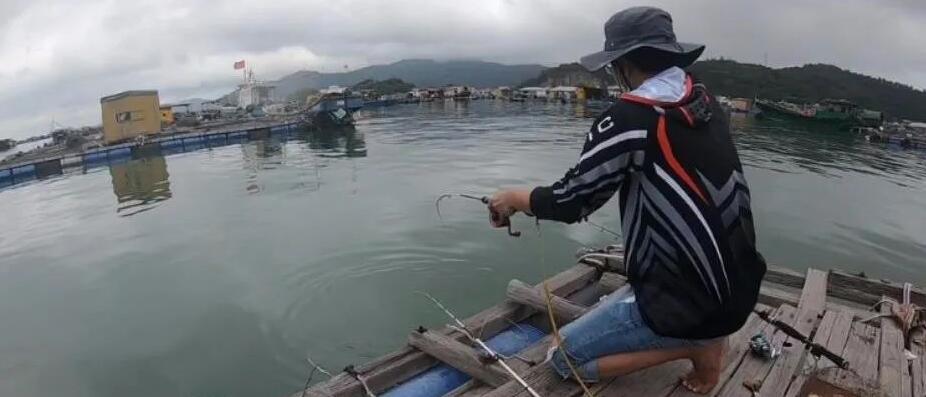 小编龟洲鱼排钓鱼打龟,惨到要去农贸市场买鱼